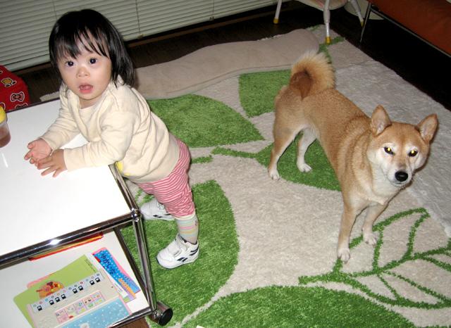 ダウン症優2歳7ヶ月