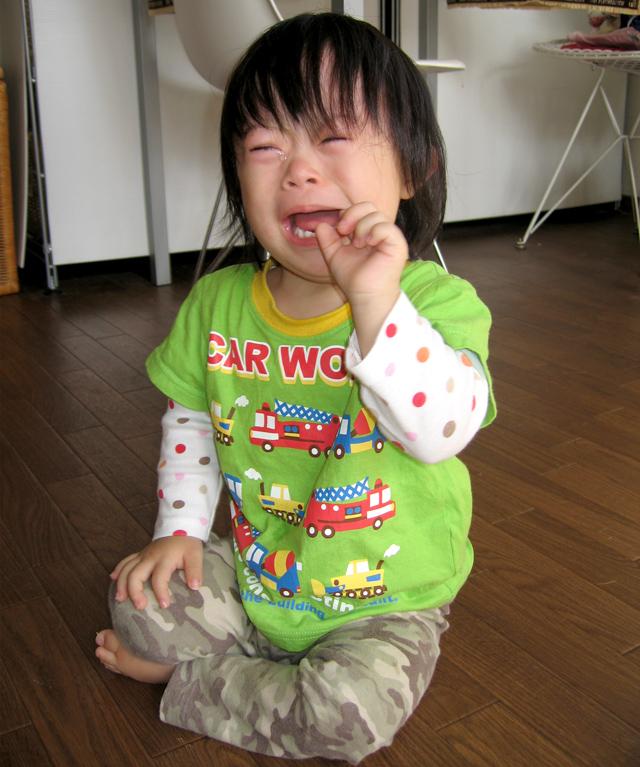 ダウン症優2歳4ヶ月