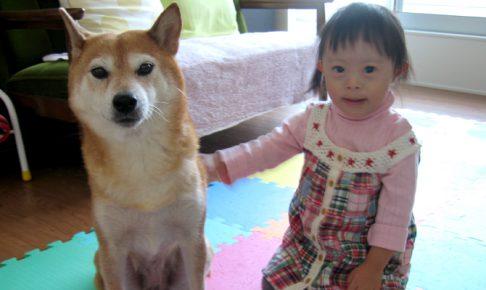 ダウン症優3歳時期の成長備忘録