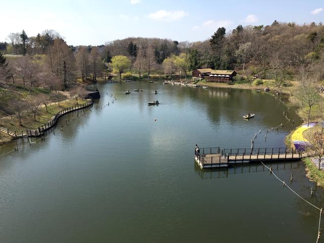 ふなばしアンデルセン公園太陽の池