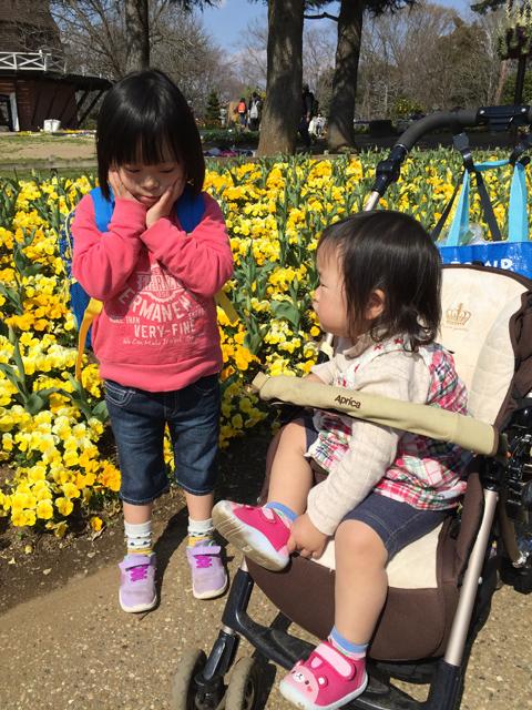 ゆすい姉妹花壇01