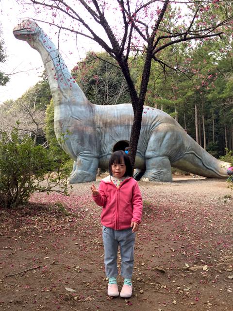ダウン症優手賀の丘公園恐竜滑り台