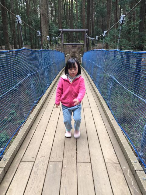 ダウン症優手賀の丘公園つり橋