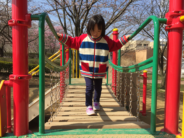 ダウン症優柏ふるさと公園遊具