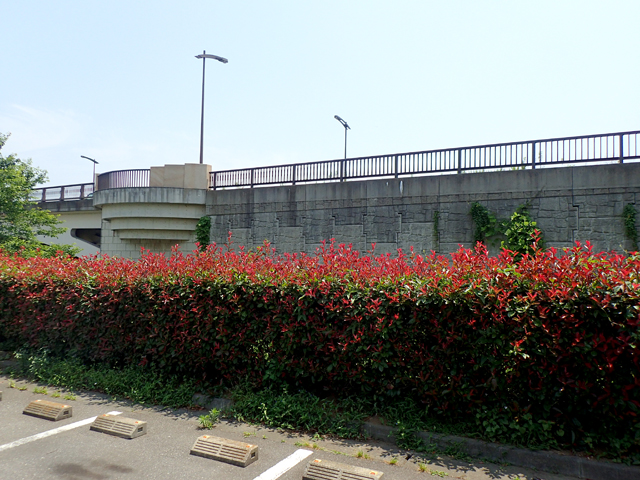 手賀大橋のコンクリート壁