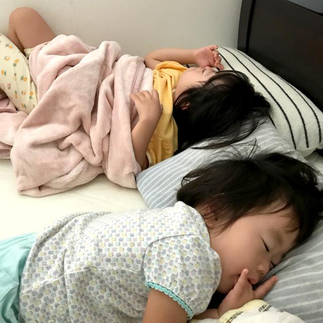 ゆすい姉妹寝る