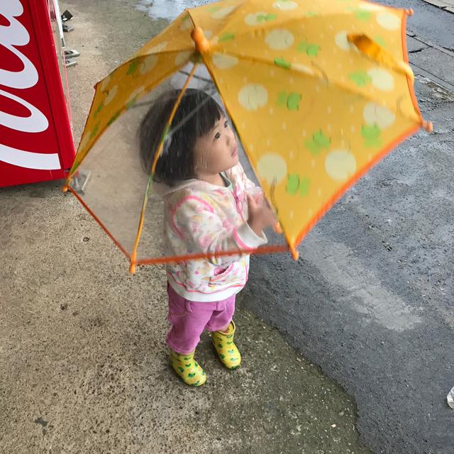 翠傘させるようになった
