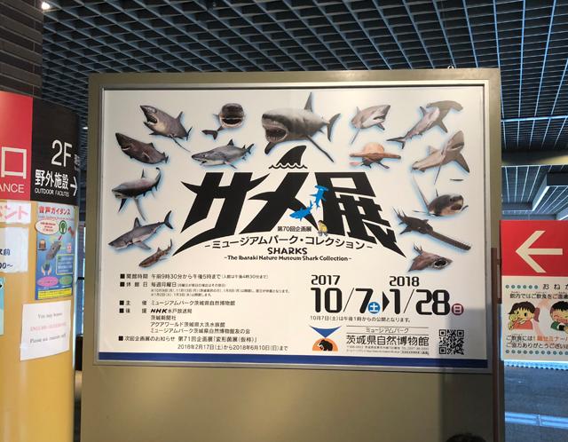 ミュージアムパーク茨城県自然博物館サメ展ポスター