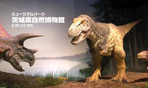 ミュージアムパーク茨城県自然博物館に行ってきた感想