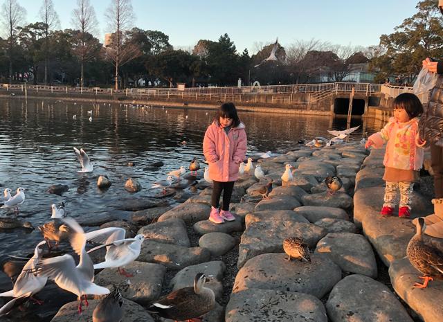 ゆすい姉妹手賀沼公園